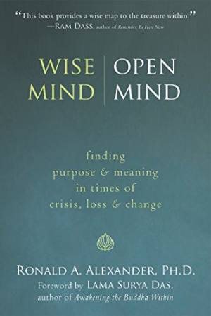 Wise Mind - Open Mind